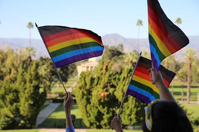people waving pride flags
