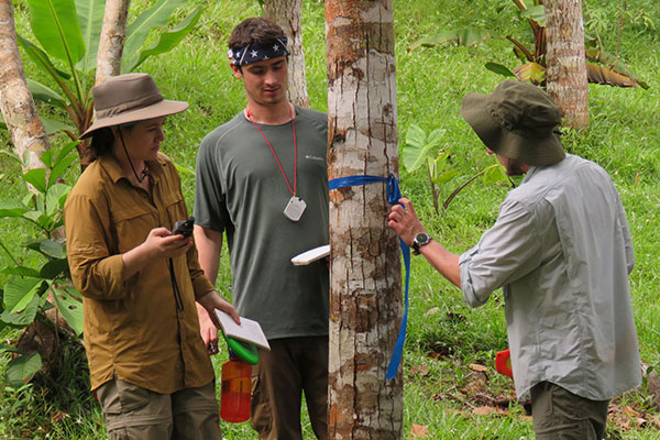 Students inspecting a tree in panama