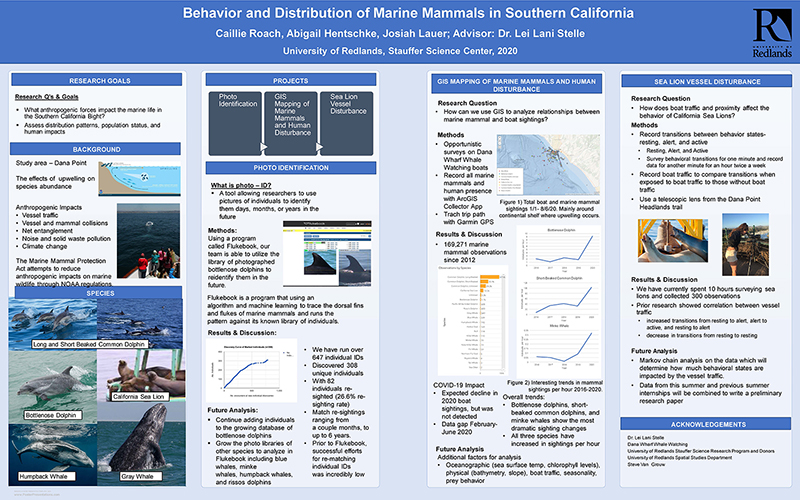 SSR 2020 Behavior and Distribution of Marine Mammals in Southern California.jpg