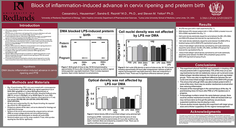 SSR 2020 Block of inflammation-induced advance in cervix ripening and preterm birth.jpg